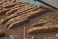 Exportaciones de la madera Imagen de archivo libre de regalías