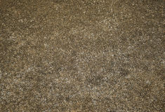 Exposed aggregate concrete surface. Background Royalty Free Stock Photo