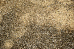 Exposed aggregate concrete surface. Background Royalty Free Stock Photos