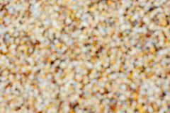 Exposed aggregate finish on the floor stock photos