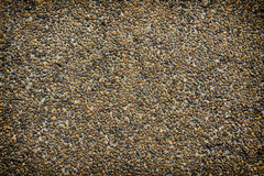 Exposed aggregate finish. Rough texture surface of exposed aggregate finish, Ground stone washed floor, made of small sand stone in light brown color Royalty Free Stock Image