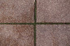 Exposed aggregate pavement with crossed joints. With moss Royalty Free Stock Image