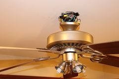 Exposed ceiling fan wires. Ceiling fan is also hanging in the picture Royalty Free Stock Photos