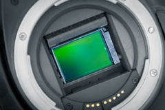Exposed image sensor. DSLR, APS-C chip. Exposed APS-C image sensor, mirror lifted up Royalty Free Stock Images