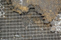 Hole chewed through Weld mesh in aviary by rats. Stock Photography