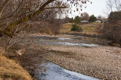 Exposed River bed with low water in winter. River rock, bare trees and a farm in the background Stock Photography
