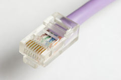 An exposed RJ45 networking plug Stock Photos