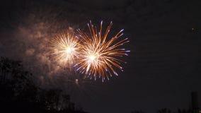 Exposição colorida brilhante do fogo de artifício para a celebração Fotografia de Stock