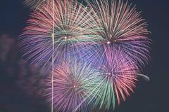 Exposição colorida dos fogos-de-artifício no fundo do céu noturno Imagem de Stock Royalty Free
