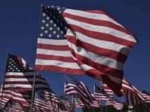 Exposição da bandeira americana Fileiras da bandeira dos Estados Unidos unfurled e do voo no uníssono contra um céu claro azul pr imagem de stock