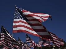 Exposição da bandeira americana Fileiras da bandeira dos Estados Unidos unfurled e do voo no uníssono contra um céu claro azul pr foto de stock royalty free