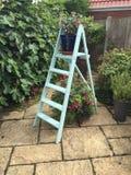 Exposição da escada portátil do jardim foto de stock royalty free