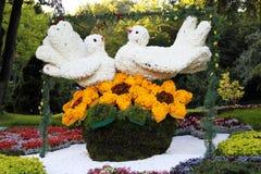 Exposição da flor cronometrada ao Dia da Independência Fotografia de Stock