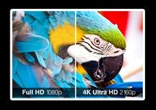 exposição da televisão 4K Fotografia de Stock