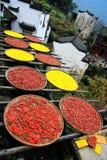 Exposição das colheitas na estação do outono na vila de Huanglin Imagens de Stock