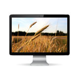 Exposição de computador com campo de trigo na tela foto de stock