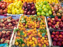 Exposição do fruto no mercado Foto de Stock Royalty Free