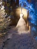 Exposição do inverno do vestido de casamento Foto de Stock Royalty Free