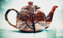 Exposição dobro do potenciômetro do chá imagens de stock royalty free
