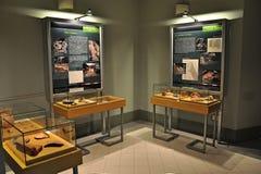 Exposição ibérica da arqueologia Foto de Stock