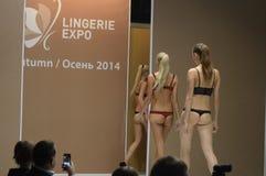5a exposição internacional do roupa interior, do roupa de banho, do desgaste da casa e da expo de Lingrie da meia Foto de Stock