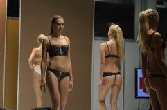 5a exposição internacional do roupa interior, do roupa de banho, do desgaste da casa e da meia Moscou Foto de Stock