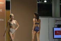 5a exposição internacional do roupa interior, do roupa de banho, do desgaste da casa e do desejo 'sexy' da meia Foto de Stock