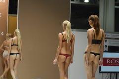 5a exposição internacional do roupa interior, do roupa de banho, do desgaste da casa e do outono do desfile de moda da meia Imagem de Stock Royalty Free