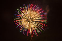 Fogo-de-artifício contra um céu preto Foto de Stock
