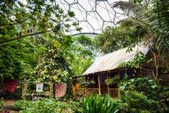 Exposição malaia da casa da floresta úmida em Eden Project fotografia de stock
