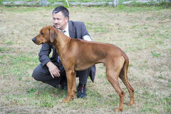 Exposición canina el dueño del perro Imagenes de archivo