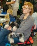 Exposición canina internacional CACIB-FCI Foto de archivo libre de regalías