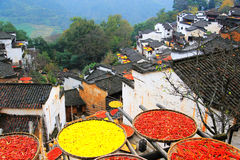 Exposición de cosechas en la estación del otoño en el pueblo de Huanglin imagenes de archivo