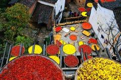 Exposición de cosechas en la estación del otoño en el pueblo de Huanglin imagen de archivo