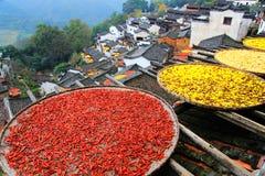 Exposición de cosechas en la estación del otoño en el pueblo de Huanglin Foto de archivo