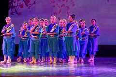 Exposición de enseñanza de clasificación Jiangxi del logro de los niños de la prueba de la academia de la danza de Pekín de la ch fotografía de archivo