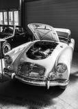 Exposición de la antigüedad y de los coches de deportes Fotografía de archivo libre de regalías