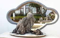 Exposición de los bonsais Imagen de archivo libre de regalías