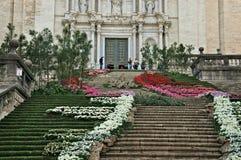Exposición de tiempo de la flor de Girona Fotografía de archivo
