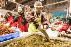 Exposición del alimento del año del conejo en Chongqing, China Fotos de archivo libres de regalías