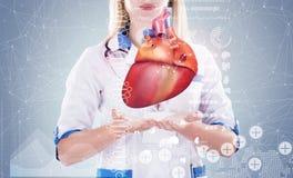 Exposición doble Doctor que sostiene los órganos humanos y x28; heart& x29; , fondo gris Fotografía de archivo libre de regalías