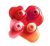 Exposición doble: Esmalte de uñas derramado y un fondo de rosas rojas Imagen de archivo