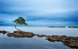 Exposición larga del paisaje marino dramático cambiante imagen de archivo libre de regalías