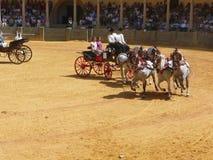 Exposition équestre à l'anneau de taureau de Ronda, Espagne Images libres de droits