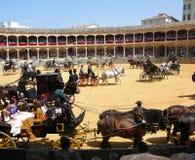Exposition équestre à l'anneau de taureau de Ronda, Espagne Photo libre de droits