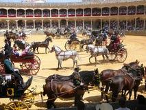 Exposition équestre à l'anneau de taureau de Ronda, Espagne Photos libres de droits