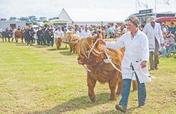 Exposition agricole de Nairn. Photos libres de droits
