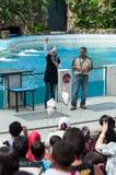 Exposition animale Photographie stock libre de droits