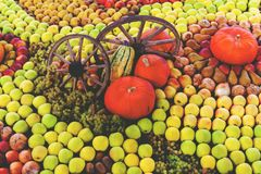 Exposition with autumn fruits. And vegetables Stock Photography