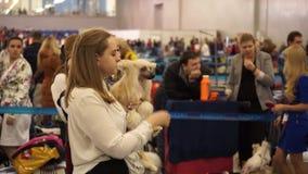 Exposition canine internationale CACIB-FCI banque de vidéos